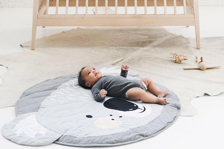 Mister Fly play mat