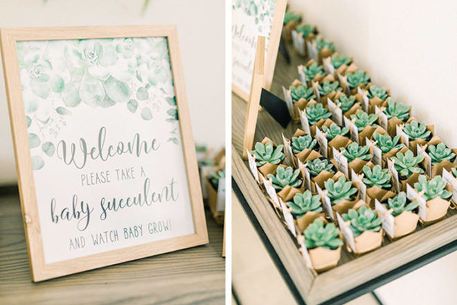 Boho baby shower favours, baby succulents
