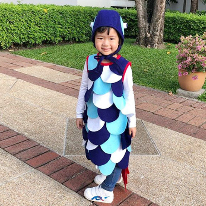 The Rainbow Fish costume, Book Week