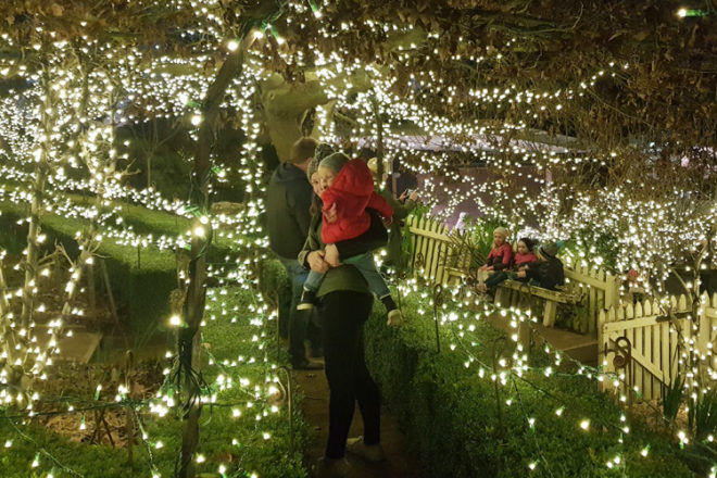 Winter Wonderlights at Sovereign Hill, Tunnel of Lights