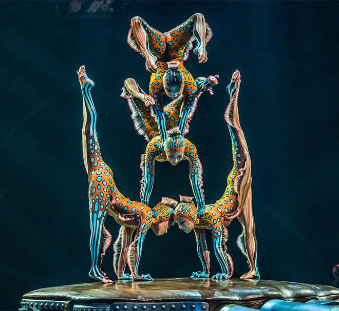 Cirque du Soleil contortion