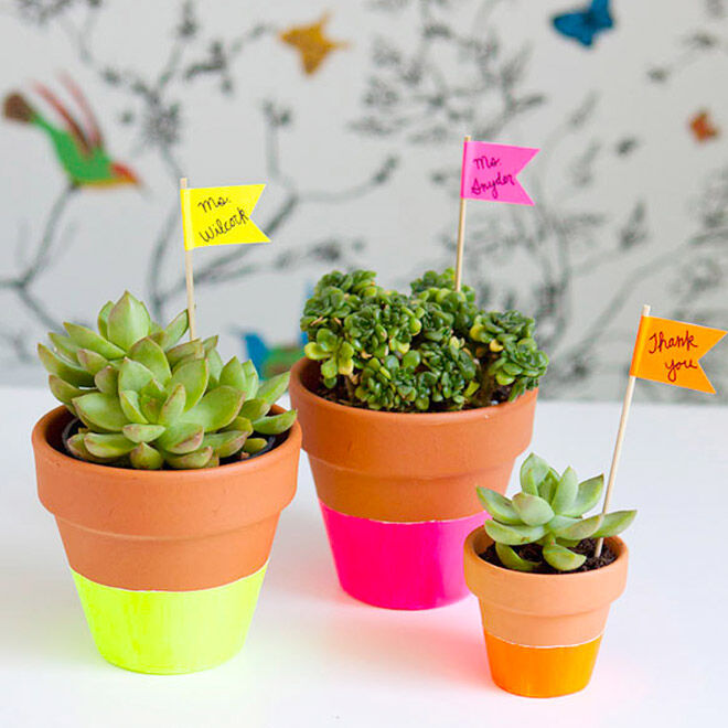 Neon dipped pots teach gift