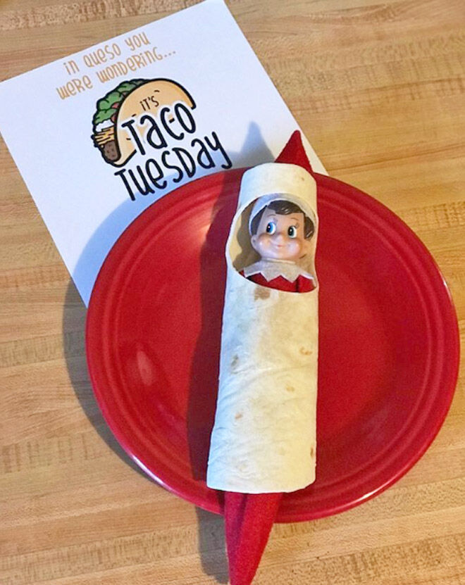 Taco Tuesday Elf on the Shelf