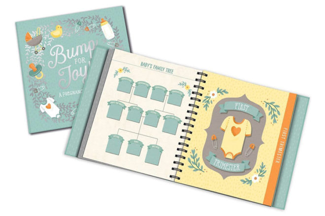 Bump for Joy pregnancy journal by Studio Oh!