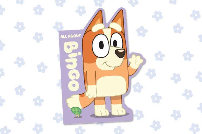 Bluey Book All About BIngo