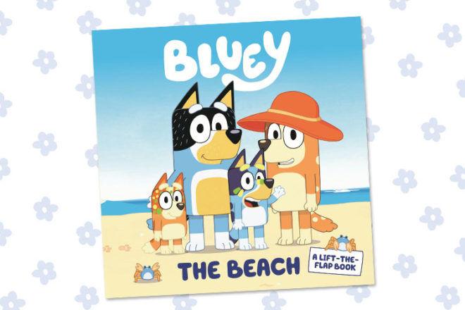 Bluey Book The Beach