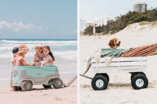 10 Best Beach Trolleys and Wagons