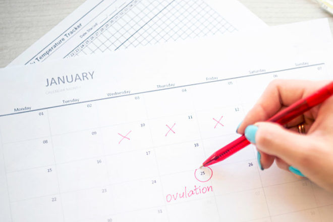 Keep track of your ovulation cycle to help conceive naturally