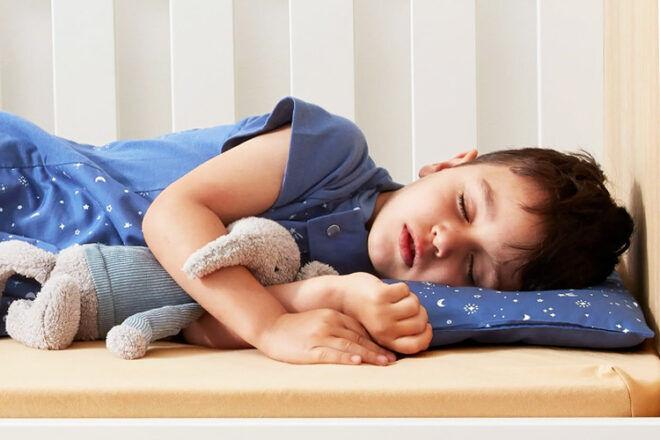 ErgoPouch Organic Toddler Pillow