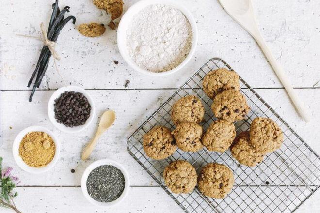 10 best lactation cookies for milk supply | Mum's Grapevine
