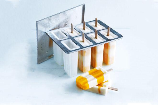 Donna Hay Ice Cream Mould